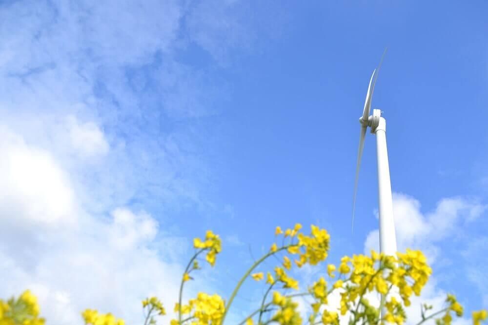 Wind turbine commissioning - Renewables First