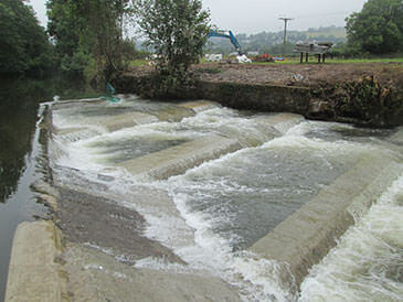 Working pool and weir fish pass