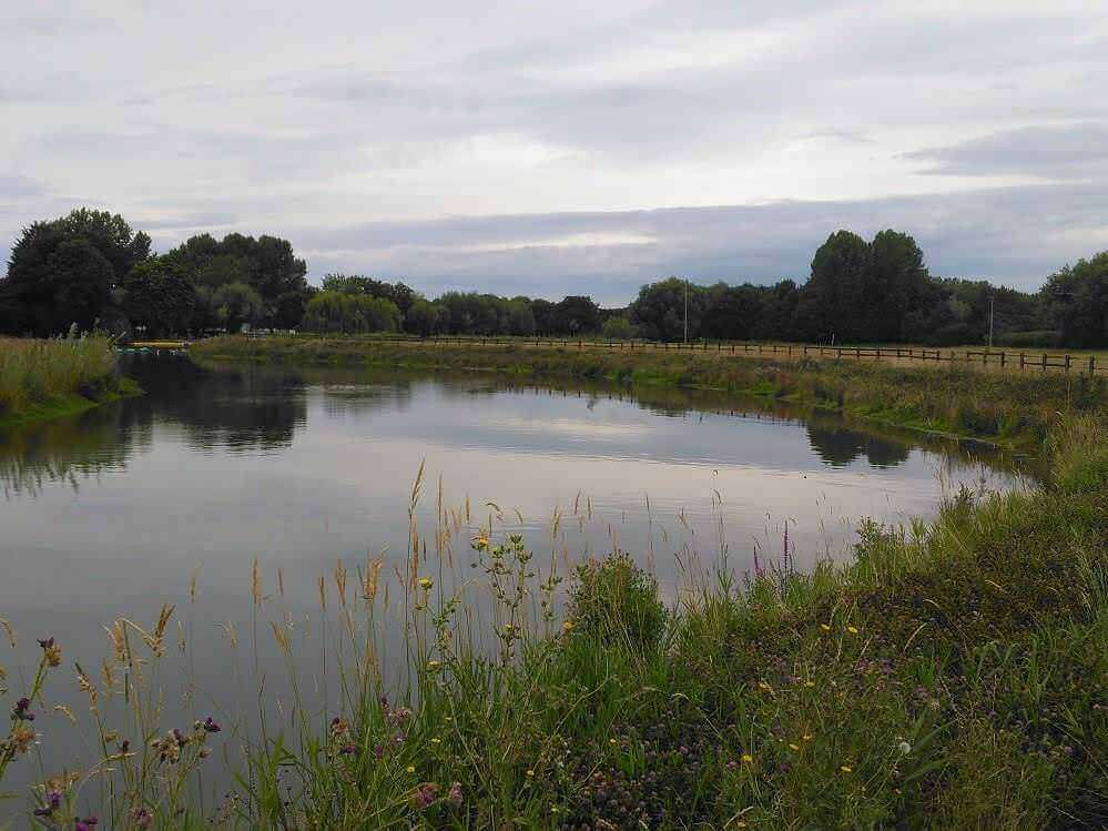 Pershore hydro scheme biodiversity - Renewables First