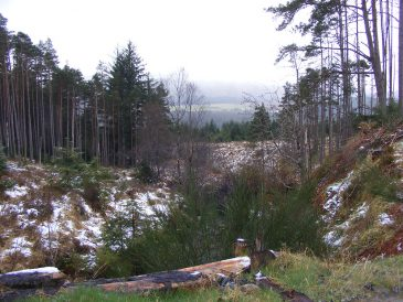 Allt na Feara Forestry Commission Hydro