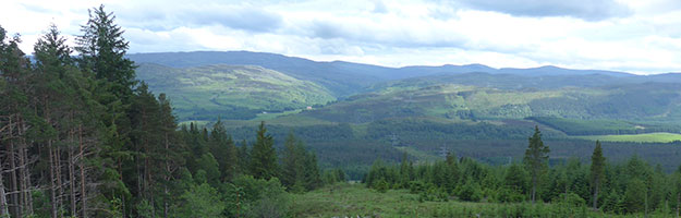 Renewables First to install hydropower scheme on Forestry Commission Scotland site