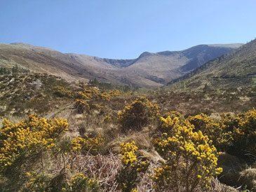 Hydro site Allt Coire a Bhainidh, Scotland